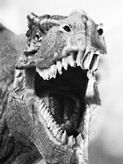 Remember: 'Only floss the ones you want to keep'! (frankhimself) Tags: ngc foliage vignette bikes jaws teeth scary bw dinosaur trex