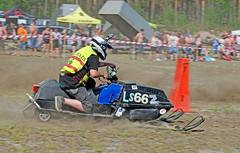 drag027 (minitmoog) Tags: dragrace grass dragracing sleds snowmobiles skoter veteran vintage lycksele