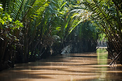 channel (_Maganna) Tags: vietnam channel water river mud muddy green jungle outside day light travel