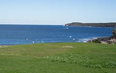 Seagulls and sea (joyceandjessie) Tags: bareisland coast