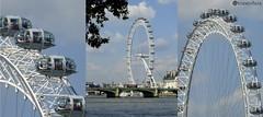 London Eye (sciencebase) Tags: london siteseeing summer city