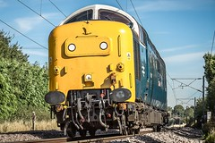 55007 Pinza returns to the East Coast (deltic17) Tags: pinza royalscotsgrey 55007 55022 deltic deltics napier napierdeltic 3 300hp twostroke railway rail train locomotive loco heritage power diesel heritagediesel childhood memories beast class55 canon canonraw canon5dmk3 raw country countryside ecml eastcoastmainline britishrail brblue br whitewindowframes fp yk finsburypark lowphoto