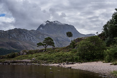 Slioch (Damon Finlay) Tags: wester ross westerross loch maree lochmaree slioch scottish highlands scottishhighlands islands highlandsandislands scotland mountains wilderness nikon d750 nikond750 tamron 2470 f28 tamron2470f28 natural beauty naturalbeauty landscape