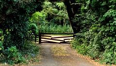 The Old Farm Gate (Chrissie L - doesn't do Photoshop) Tags: capturenx2 hempstead nikond700 gb