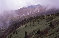 (t_mimizuk) Tags: film contax tvs autumn leaves nature mountain volcano shirane gunma japan