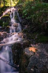 Weiensee (Ronny Gbler) Tags: wasser wasserfall steine blatt bltter grn schn sonnenlicht sonne langzeitbelichtung moos kontraste farben