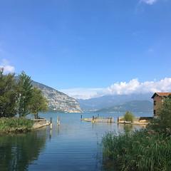 (Paolo Cozzarizza) Tags: italia lombardia brescia iseo acqua lago lungolago panorama piante alberi prato