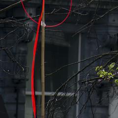 ligne rouge 32 (godelieve b) Tags: square carr lignerouge minimal noncoloursincolour lines urban brussels