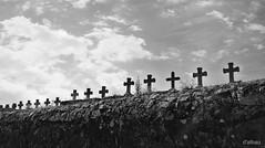Overbooking (Franco DAlbao) Tags: francodalbao dalbao nikond60 bn bw paredn wall muertos dead guerracivil civilwar 1936 cruces crosses cementerio cemetery spain espaa fusilamientos executions vergenza shame muerte death