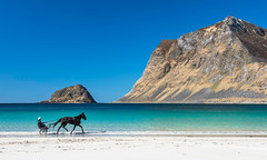 Arctic Beach....? (Danil) Tags: lofoten norway beach haukland leknes horse riding leisure blue colorful water ocean arctic atlantic daniel bosma landscape mountain sand