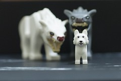 Stop the bully (hoeynairda) Tags: scary horror fierce pets stop stopbully prey wolves wolf dogs bully toys lego