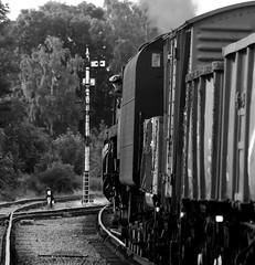 GCR 43150bwcr (kgvuk) Tags: gcr greatcentralrailway trains railways locomotive steamlocomotive 9f 2100 92212 92178 swithlandsidings