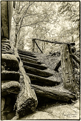 Up or Down (Back Road Photography (Kevin W. Jerrell)) Tags: steps blackandwhite old nikond60 backroadphotography stairs roaringforkmotortrail seviercounty sevierville historic