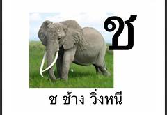 ช ช้าง วิ่งหนี