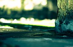 Stalagmit Köttgen (josefcramer.com) Tags: street leica people 35mm deutschland 50mm europa industrial transformation decay cologne menschen summicron josef land change 24mm bergisches summilux asph rheinland structural cramer strukturwandel gl m9 gladbach elmarit bergisch gl1 strasen strase