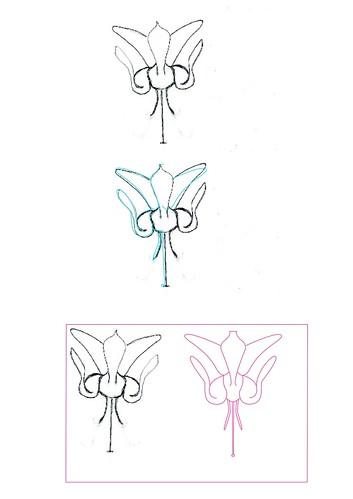 mappe_flower_entstehung2