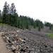 Margo On A Bike - High Lakes Trail, Winema National Forest, Oregon