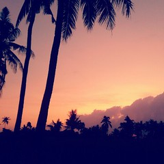 Morgen Alle   #noedit (YosephCst) Tags: sunrise square nashville squareformat banyuwangi iphoneography instagramapp uploaded:by=instagram sunriseofjava banyuwangisunriseofjava
