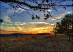 Fall Leaves (Coasterluver) Tags: sunset red clouds hills andrewkirby coasterluver
