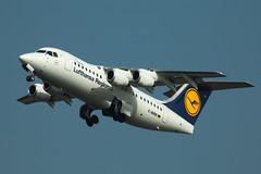 D-AVRR (GerardvdSchaaf) Tags: 146 bae lufthansa lufthansaregional aircraft airliners airplane schiphol aviation eham