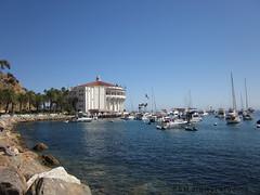 Catalina Island Trip Avalon Marina / The Casino (pmadsidney) Tags: newportbeach orangecounty losangelescounty santacatalinaisland catalinaflyer longbeachcalifornia avaloncalifornia catalinaislandtrip