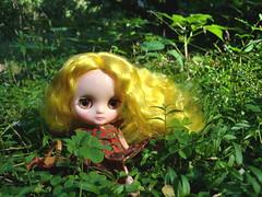 yellow hair on green