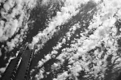 Eureka (thescatteredimage) Tags: blackandwhite cloud film 28mm australia melbourne olympus victoria diafine eureka eurekatower 2012 redfilter trix400 cloudage om4ti iso1000 20mmf28
