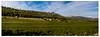 Les Rouvières [Explored 8-10-2012] (Gabi Monnier) Tags: france automne canon landscape flickr panoramic jour provence paysage vignes colline saintebaume provencealpescôtedazur roquefortlabédoule extérieur canoneos600d gabimonnier rouvières