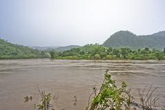 DSC04594 (andrewlorenzlong) Tags: thailand burma border chiangmai burmeseborder maemoeinationalpark