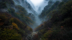 Way to Huashan (outvizion) Tags: huashan china mountain fog valley autumn landscape travel