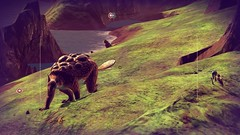 Giant Armadillo (peterlmorris) Tags: videogame nomanssky hellogames sciencefiction space spaceship fighter starfighter animal alien