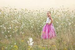 Lana (sandradphotos) Tags: fille douceur calin amour rose rire jeu princesse tutu fort pierres champ cressonsacq oise france