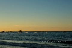 20160828-IMG_7736-WM (Pamela McLellan Zmija) Tags: pamelamclellanzmija saugeenshores portelgin sunset beach lakehuron goblesgrove sunshine
