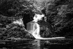 Spectacle E'e Falls BW (Rossco156433) Tags: strathaven sandford scotland lanarkshire southlanarkshire nature landscape river water outdoors waterfall spectacleeefalls beautiful beauty falls blackwhite bw