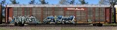 Wasp/Avert (quiet-silence) Tags: graffiti graff freight fr8 train railroad railcar art wasp avert mfk ld syw autorack sp southernpacific ttgx255869
