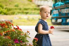 Little Florist (Andr Moecke) Tags: flowerpower colors littlegirl luiza luisa