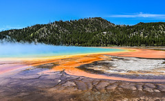 Grand Prismatic Spring (T.M.Peto) Tags: grandprismaticspring yellowstonenationalpark wyoming nationalpark park hotspring spring steam colors colorful extremophiles thermophiles geology geothermal forest trees pine pines biology nps nps100 mountain mountainside outdoor outdoors getoutdoors getoutside travel nature godscreation beautiful scenicsnotjustlandscapes landscape