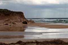 After the Rain and Storms (blachswan) Tags: portfairy victoria australia ocean southernocean sand sanddunes washout gormansroad