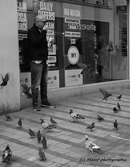 Feed the birds, £2 a bag, £2, £2, £2 a bag. ((c) MAMF photography.) Tags: art arty blackandwhite blackwhite britain bw biancoenero blancoynegro blanco blancoenero birds city england enblancoynegro flickrcom flickr feeding flight google googleimages gb greatbritain greatphotographers greatphoto inbiancoenero image leeds ls1 leedscitycentre mamfphotography mamf monochrome nikon noiretblanc noir negro north nikond7100 northernengland onthestreet pigeon pigeons photography pretoebranco photo people schwarzundweis schwarz street town uk unitedkingdom upnorth westyorkshire yorkshire zwartenwit zwartwit zwart