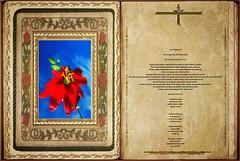 Lectura Carta I de San Pablo a los Corintios 11,17-26.33. Obra Padre Cotallo