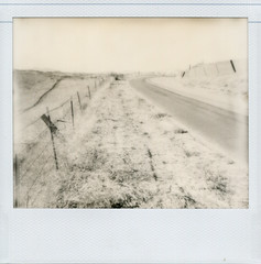 road in Los Olivos (NatalieJohnsonOram) Tags: california road blackandwhite film polaroid roadtrip spectra losolivos impossibleproject