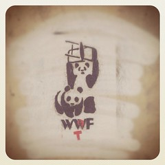 (samozer@rocketmail.com) Tags: white black graffiti blood stencil chair panda kill over style wtf swag wwe wwf