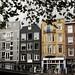 A verdadeira cara de Amsterdã