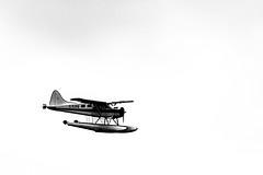 Landing (Chadwise) Tags: water plane flying landing