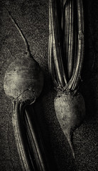 261/366 - Beetroot (beeblebear) Tags: bw stilllife white black monochrome canon project eos vegetable 365 root veg beetroot homegrown 366 project365 400d project366