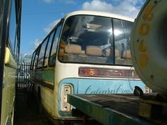 E901 DRG (markyboy2105112) Tags: bedford elite bobsmith plaxton calvarycoaches