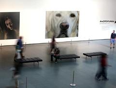 "PhotoFunia:   ""Art Exhibit Edit"""