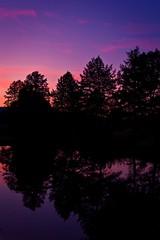 Purple Heaven (Stahlinho) Tags: trees sunset reflection water canon germany deutschland wasser heaven shadows sonnenuntergang himmel kit bume schatten spiegelung 550d