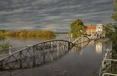 Swing Bridge at Cawood under water (cwb1290) Tags: flood cawood