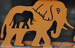 Pregnant Elephant (zeevveez) Tags: elephant art canon published within zeevveez